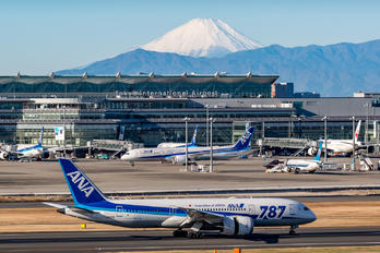 JA821A - ANA - All Nippon Airways - Airport Overview - Overall View