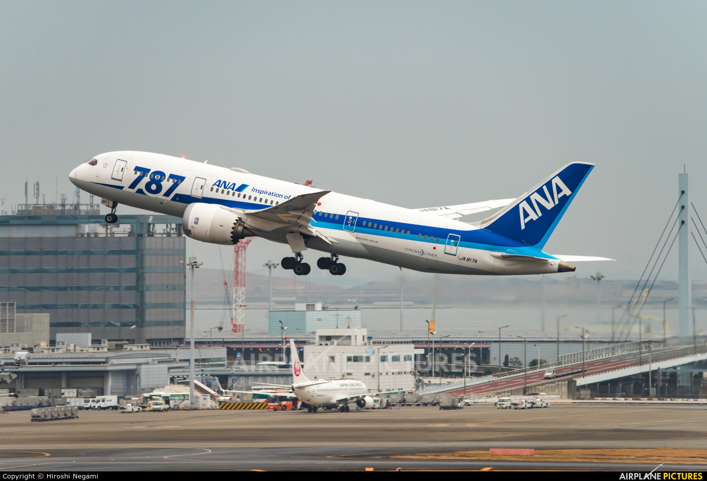 ANA - All Nippon Airways JA817A aircraft at Tokyo - Haneda Intl