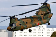 52926 - Japan - Ground Self Defense Force Kawasaki CH-47J Chinook aircraft