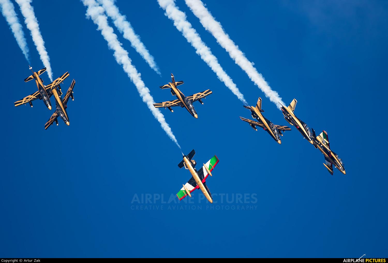 "United Arab Emirates - Air Force ""Al Fursan"" - aircraft at Ramenskoye - Zhukovsky"