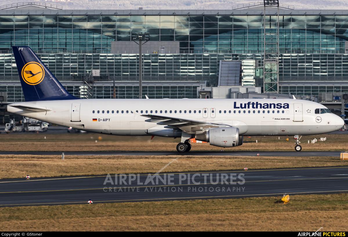 Flugankunft Frankfurt Lufthansa