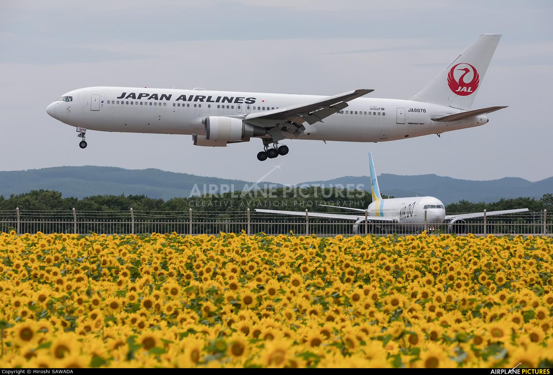 JAL - Japan Airlines JA8976 aircraft at Memanbetsu