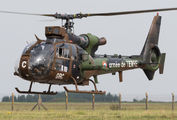 GBC - France - Army Aerospatiale SA-341 / 342 Gazelle (all models) aircraft