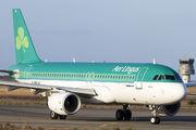 EI-DVK - Aer Lingus Airbus A320 aircraft