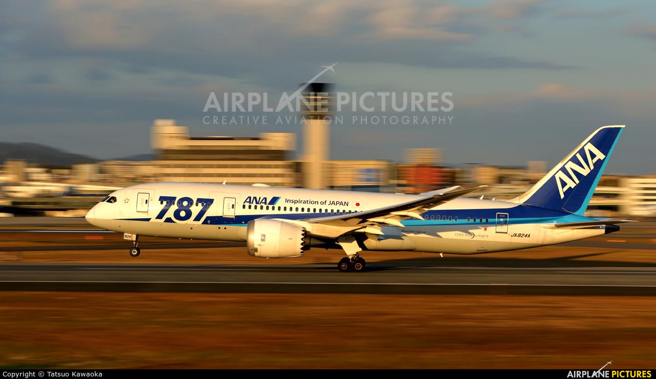 ANA - All Nippon Airways JA824A aircraft at Osaka - Itami Intl