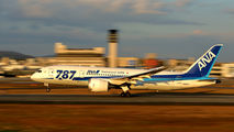 JA824A - ANA - All Nippon Airways Boeing 787-8 Dreamliner aircraft