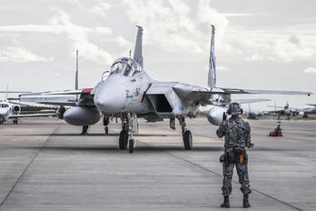 42-8947 - Japan - Air Self Defence Force Mitsubishi F-15J
