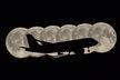 Aeroflot - Airbus A320 VQ-BRV