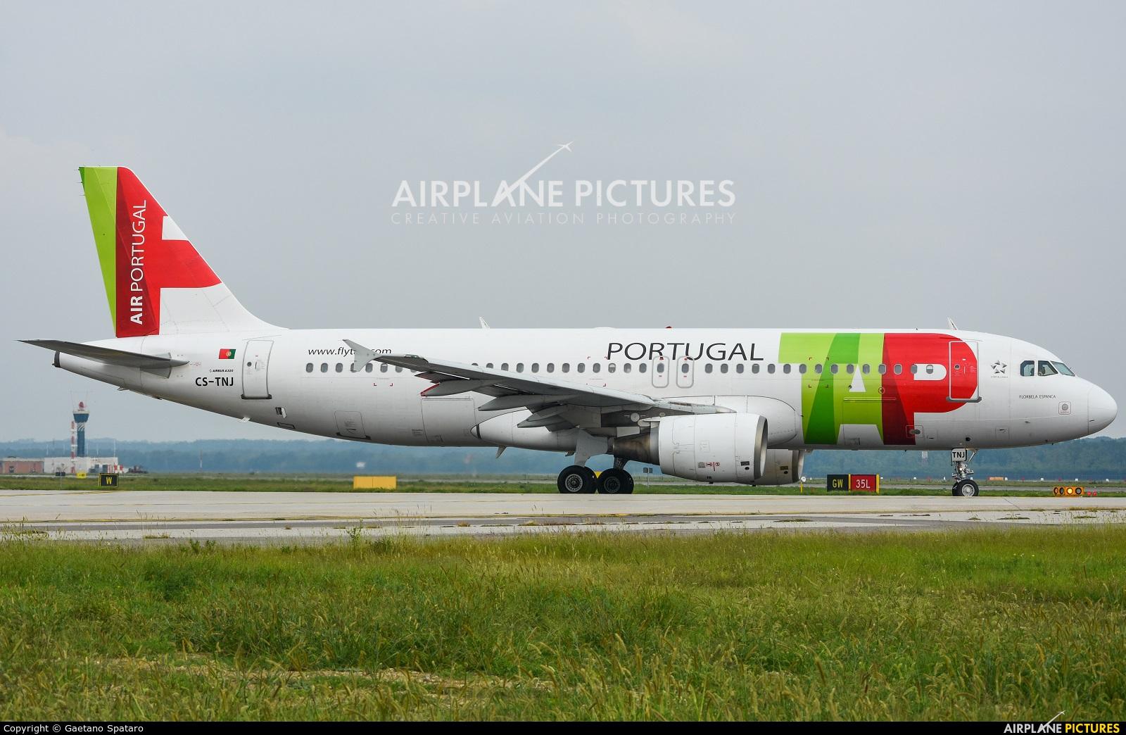 TAP Portugal CS-TNJ aircraft at Milan - Malpensa