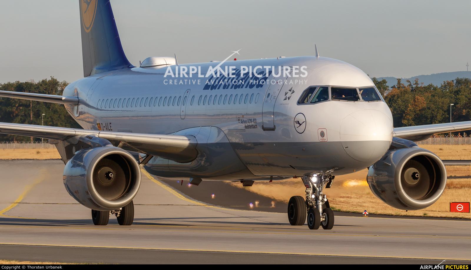 Lufthansa D-AILE aircraft at Frankfurt