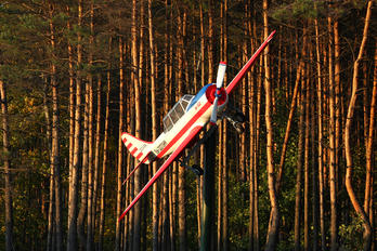 EW-057AM - Belarus - DOSAAF Yakovlev Yak-52