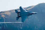 91-0306 - USA - Air Force McDonnell Douglas F-15E Strike Eagle aircraft