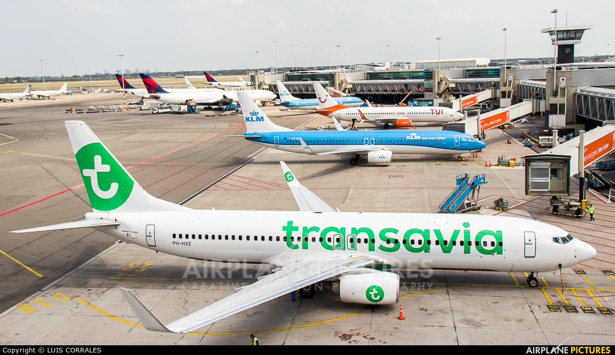 Transavia PH-HXE aircraft at Amsterdam - Schiphol