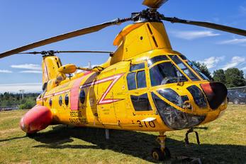 11310 - Canada - Air Force Boeing Vertol CH-113A Labrador