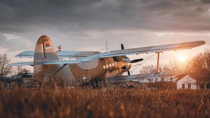 Serbia - Air Force - Antonov An-2 70373