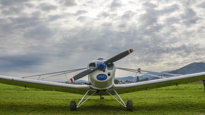 HA-TNC - Private Piper PA-25 Pawnee