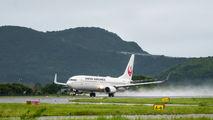 JA329J - JAL - Japan Airlines Boeing 737-800 aircraft