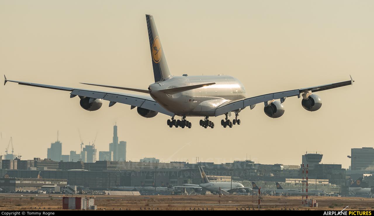 Lufthansa D-AIMM aircraft at Frankfurt
