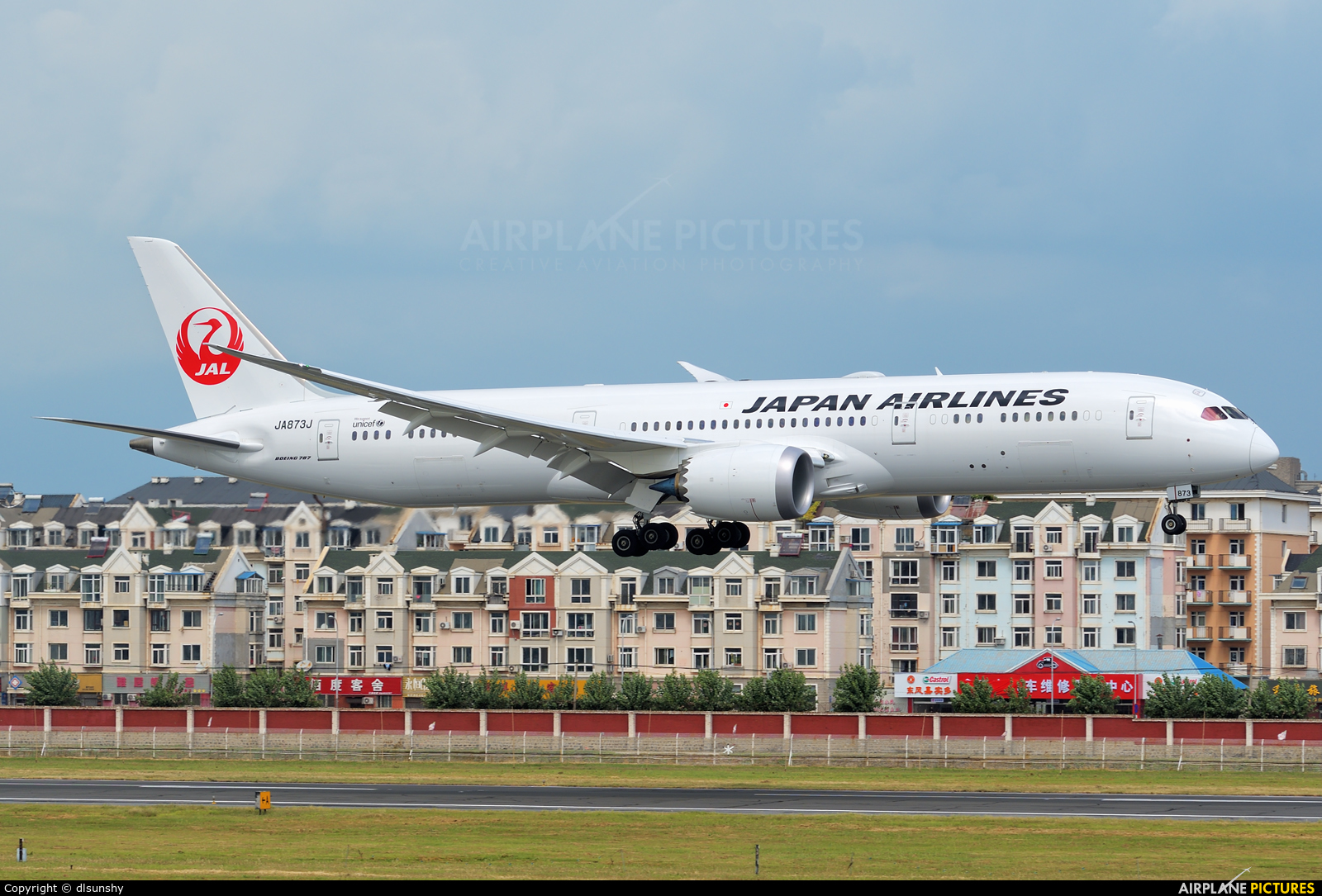 JAL - Japan Airlines JA873J aircraft at Dalian Zhoushuizi Int'l