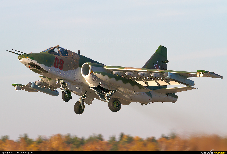 Russia - Air Force 09 aircraft at Kubinka