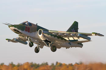 09 - Russia - Air Force Sukhoi Su-25SM