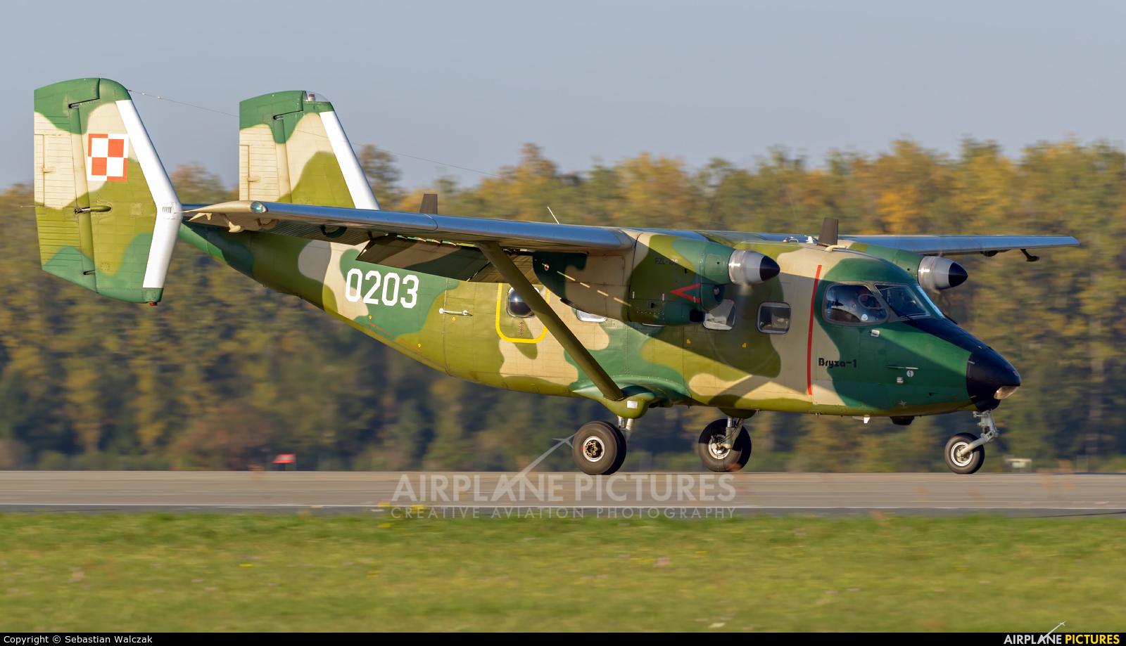 Poland - Army 0203 aircraft at Poznań - Krzesiny