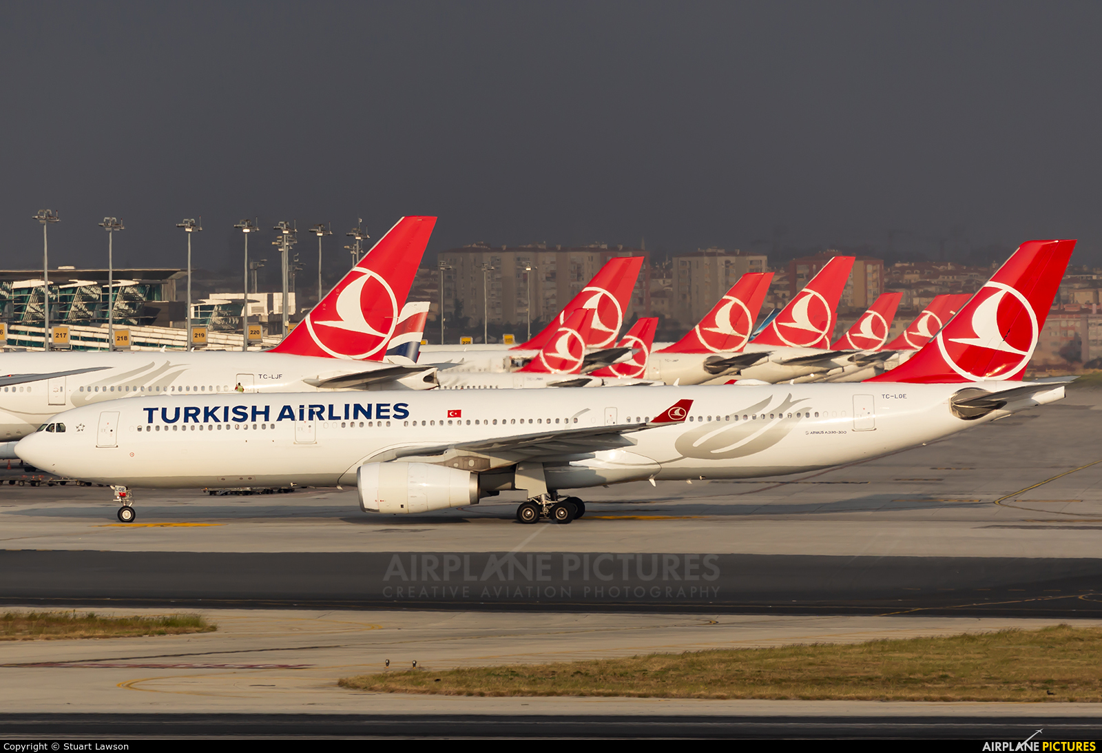 Turkish Airlines TC-LOE aircraft at Istanbul - Ataturk
