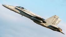 HN-418 - Finland - Air Force McDonnell Douglas F-18C Hornet aircraft