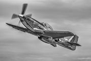 NL151AM - Private North American P-51D Mustang aircraft
