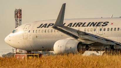 JA309J - JAL - Japan Airlines Boeing 737-800