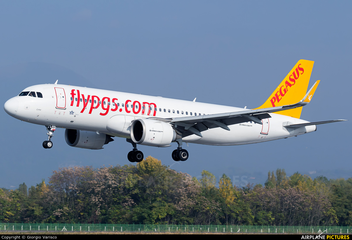 Pegasus TC-NBH aircraft at Bergamo - Orio al Serio