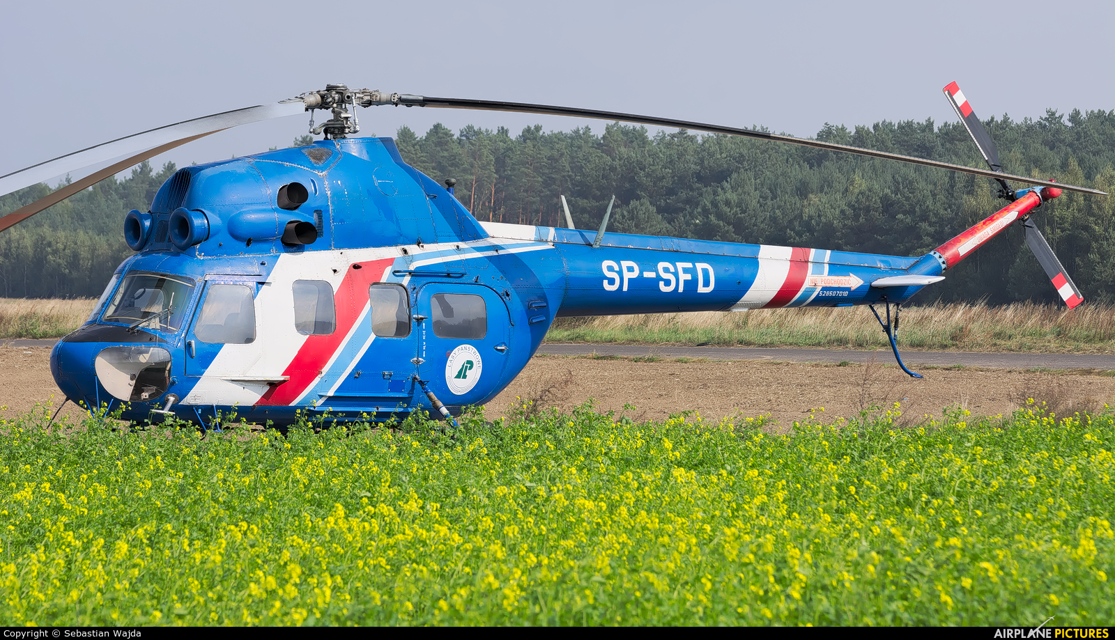 Heliseco SP-SFD aircraft at Off Airport - Poland