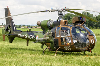 F-MGCO - France - Army Aerospatiale SA-341 / 342 Gazelle (all models)