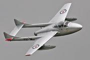 LN-DHZ - Private de Havilland DH.115 Vampire T.55 aircraft