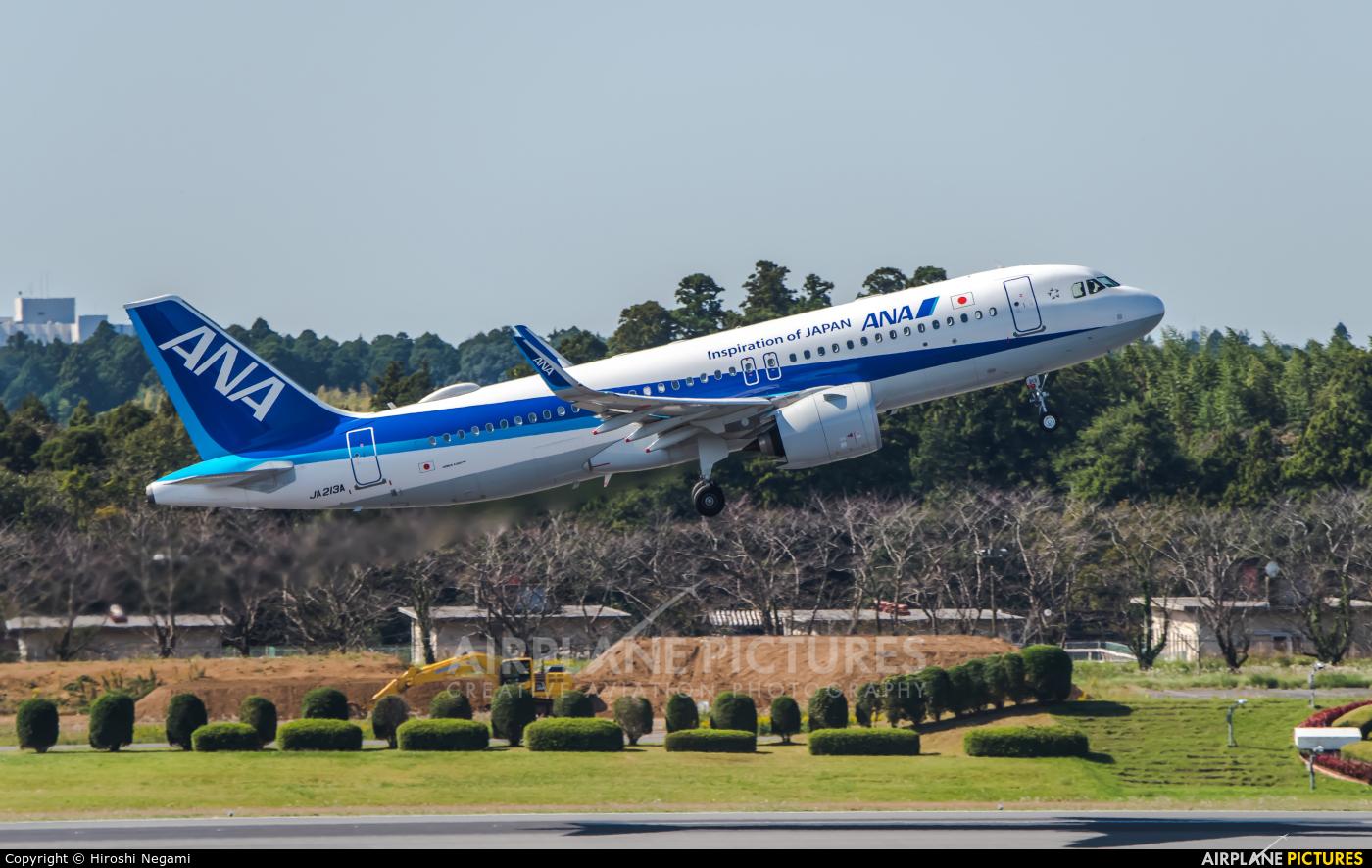 ANA - All Nippon Airways JA213A aircraft at Tokyo - Narita Intl