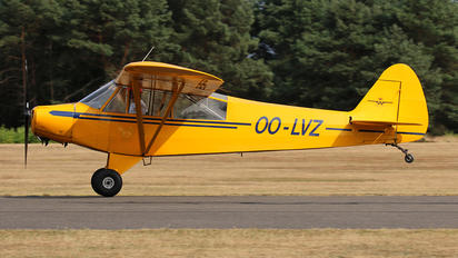OO-LVZ -  Piper PA-18 Super Cub