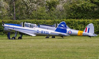G-BXGL -  de Havilland Canada DHC-1 Chipmunk