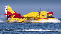 UD.14-03 - Spain - Air Force Canadair CL-415 (all marks) aircraft