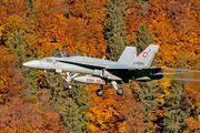 J-5025 - Switzerland - Air Force McDonnell Douglas F/A-18C Hornet aircraft