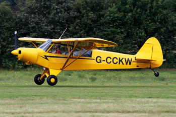 G-CCKW - Private Piper L-21 Super Cub