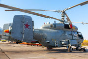 RF-34181 - Russia - Navy Kamov Ka-27 (all models) aircraft