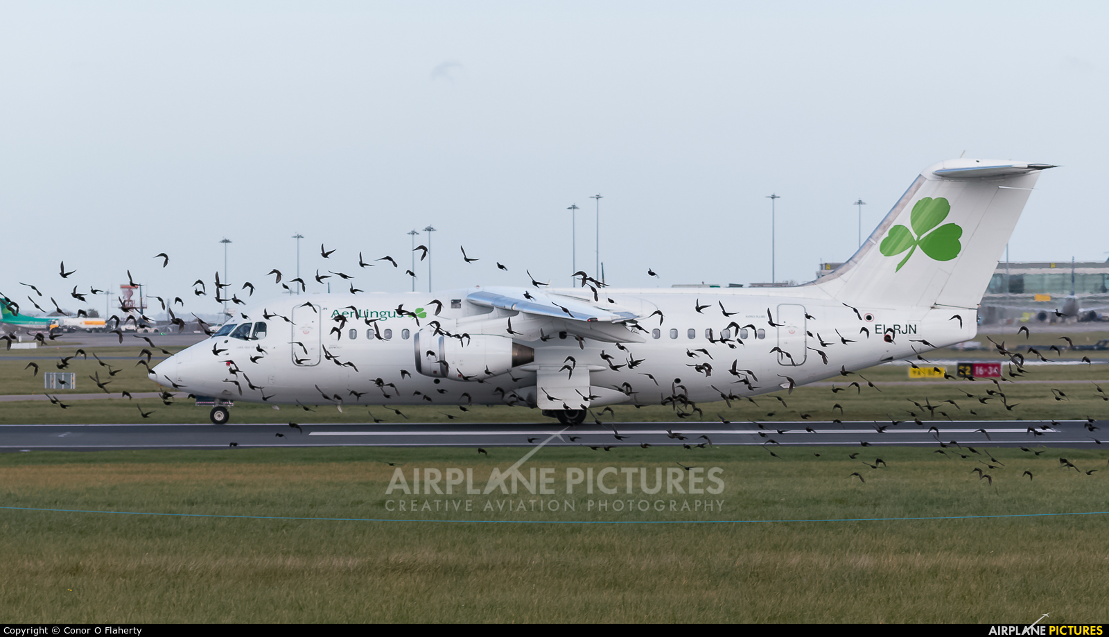 CityJet EI-RJN aircraft at Dublin