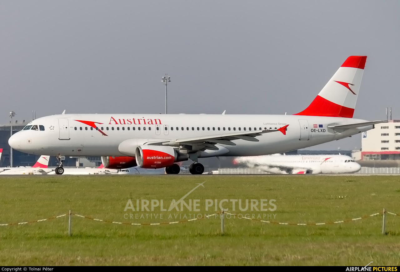 Austrian Airlines/Arrows/Tyrolean OE-LXD aircraft at Vienna - Schwechat