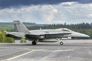 Finland - Air Force HN-423 image