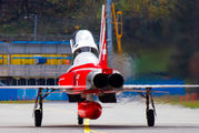 J-3082 - Switzerland - Air Force:  Patrouille de Suisse Northrop F-5E Tiger II aircraft