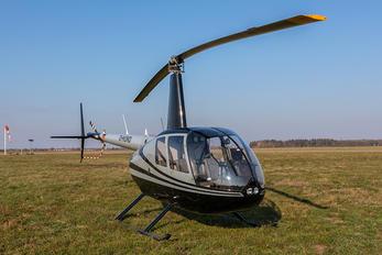 D-HUND - Private Robinson R44 Astro / Raven