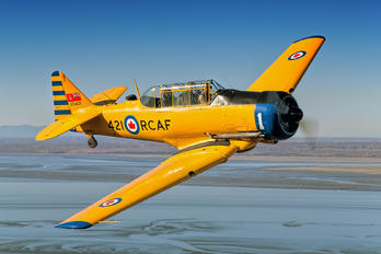 N421QB - Commemorative Air Force Canadian Car & Foundry Harvard