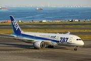 ANA - All Nippon Airways JA824A image