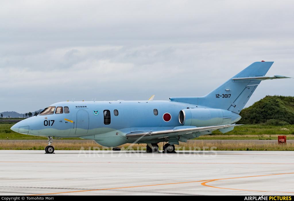 Japan - Air Self Defence Force 12-3017 aircraft at Matsushima AB