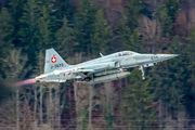J-3033 - Switzerland - Air Force Northrop F-5E Tiger II aircraft